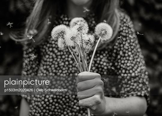 Girl Holding Dandelion Bouquet - p1503m2020426 by Deb Schwedhelm