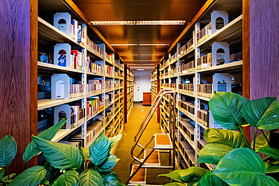 China, Beijing, Books in the National Library - p1653m2259828 by Vladimir Proshin