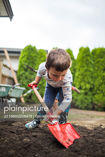handsome strong young man shoveling soil in backyard. - p1166m2208478 by Cavan Images