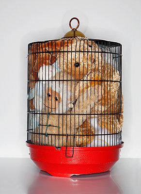 Kuscheltiere im Käfig - p801m2057201 von Robert Pola