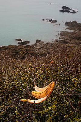 Banana's Skin - p1307m2168581 by Agnès Deschamps