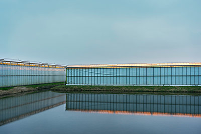 greenhouse Maasdijk at dusk - p1132m1537899 by Mischa Keijser