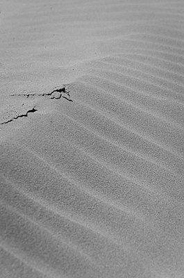 Sand dune - p1544m2116094 by Mirka van Renswoude