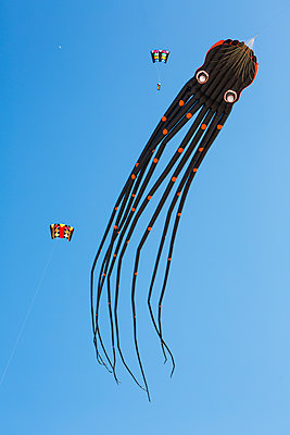 Octopus-shaped kite in the sky - p300m1549802 by Jan Tepass