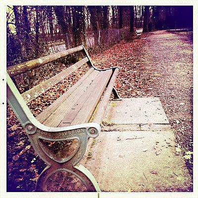 Germany, Baden-Wuerttemberg, Freiburg, bench at Waldsee - p300m1010223 by Heinz Linke