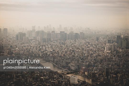 Blick über Tokio  - p1345m2055585 von Alexandra Kern