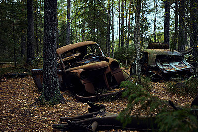 Sweden, Car cemetery in the forest - p1573m2244350 by Christian Bendel