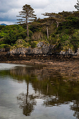 Rocky coast reflected in water - p1047m1531873 by Sally Mundy