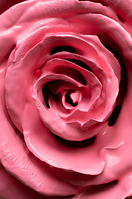 red rose flower covered in pink paint - p919m2204173 by Beowulf Sheehan