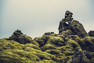 Face in Nature - p1084m986819 by Operation XZ