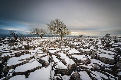 Twistleton Scar End in snow, Ingleton, Yorkshire Dales, Yorkshire, England, United Kingdom, Europe - p871m1167748 by Bill Ward