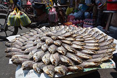 Fischmarkt in Vietnam - p1208m1461717 von Wisckow