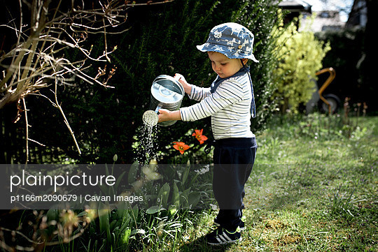 Little boy watering plants in the garden in Spring on a sunny day - p1166m2090679 by Cavan Images