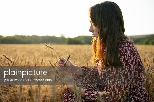 Woman in a cornfield, portrait - p1646m2293217 by Slava Chistyakov