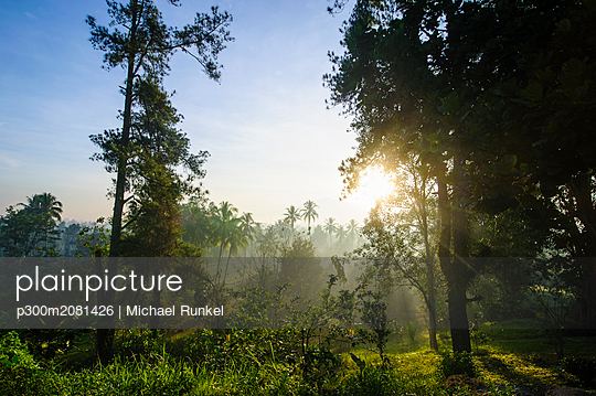 Indonesia, Java, early morning view from the Borobudur Temple Complex on the scenery around - p300m2081426 by Michael Runkel