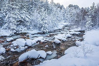 Snowy landscape at CairnGorm Mountain, Cairngorms National Park, Scotland, United Kingdom, Europe - p871m1499843 by Matthew Williams-Ellis