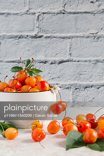 Close-up of cherries on table against wall - p1166m1543239 by Cavan Social