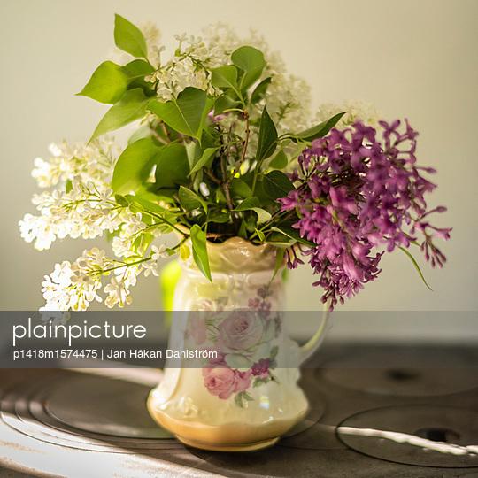 White and purple lilacs in vase - p1418m1574475 by Jan Håkan Dahlström