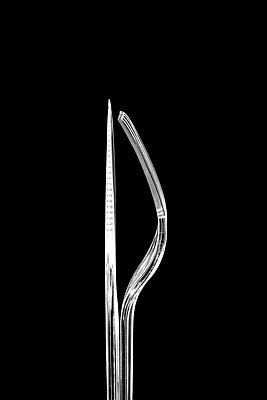 Clear plastic knife and fork against a black background. - p1302m1591689 by Richard Nixon