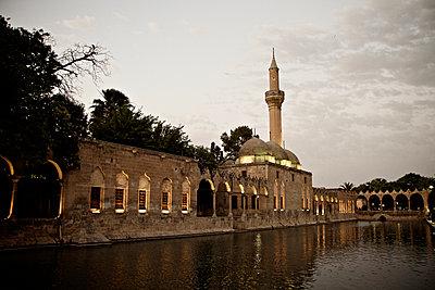 Teich des Abraham an der Halil-Rahman-Moschee, Sanliurfa, Türkei - p586m971433 von Kniel Synnatzschke