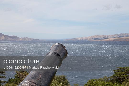 Cannon  - p1356m2205997 by Markus Rauchenwald