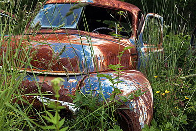 Vintage car in the grass - p1168m1040699 by Thomas Günther