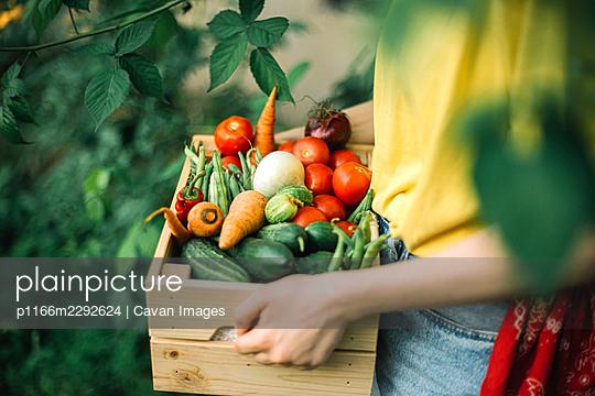 p1166m2292624 von Cavan Images