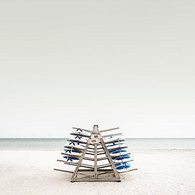Surfbretter auf einem Holzgestell am Strand von Prerow - p1162m2132686 von Ralf Wilken