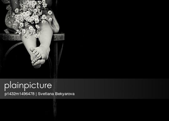 p1432m1496478 by Svetlana Bekyarova