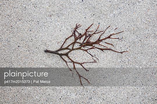 Am Strand - p417m2015373 von Pat Meise