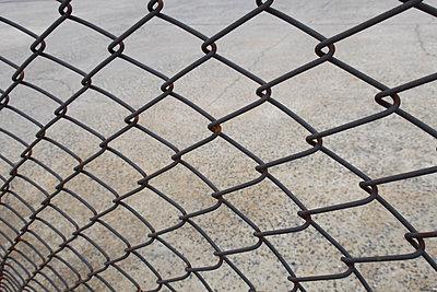 Drahtzaun Close-Up New York - p1345m1225513 von Alexandra Kern