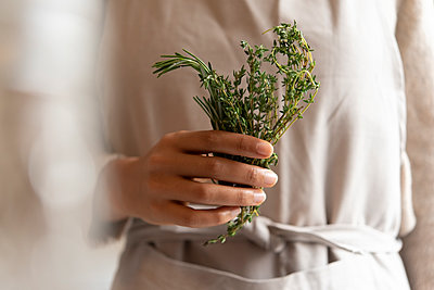 Hand of young woman holding rosemary - p1427m2077509 by Jamie Grill