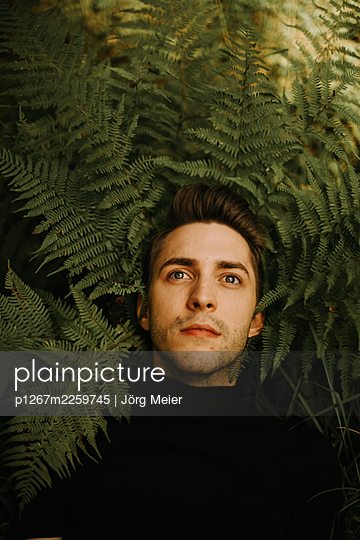 Man between fern leaves - p1267m2259745 by Jörg Meier