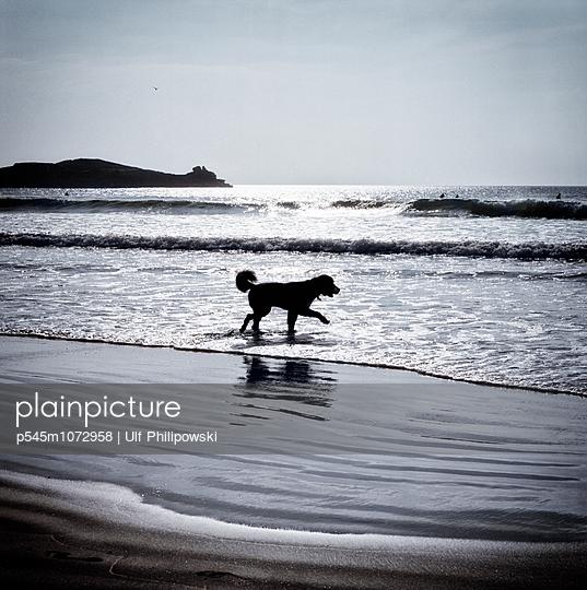 Finistère - p545m1072958 by Ulf Philipowski