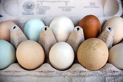 Eggs in egg carton - p267m2100198 by Ingo Kukatz