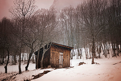 Shelter in the forest - p1007m853051 by Tilby Vattard