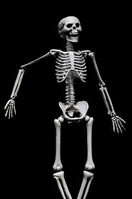 Skelett - p4500645 von Hanka Steidle
