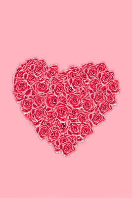 Herz aus Rosen     Roses arranged in heart shape  - p450m2231389 von Hanka Steidle