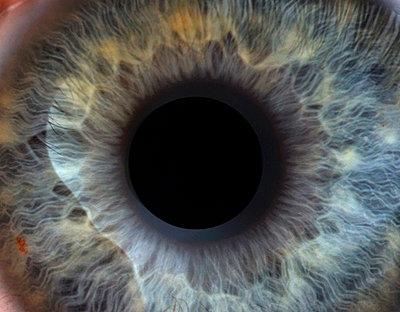 Pupille - p0900027 von Lenz