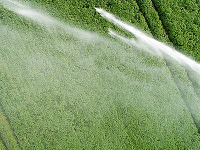 Künstliche Bewässerung im Kartoffelanbau - p1079m2157738 von Ulrich Mertens