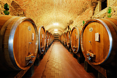 Wine Storage in Oak Barrels - p1100m2090899 by Mint Images