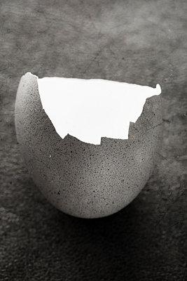 Broken eggshell - p450m1109568 by Hanka Steidle