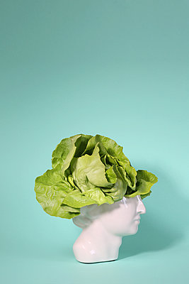 Kopf-Salat - p237m2089213 von Thordis Rüggeberg