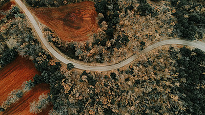 Spain, Catalonia, Lleida, Aerial view of road through forest in autumn - p300m1581320 by Oriol Castelló Arroyo
