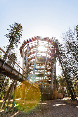 Germany, Bad Wildbad, Black Forest, Canopy Walk Black Forest against the sun - p300m2005305 by Werner Dieterich