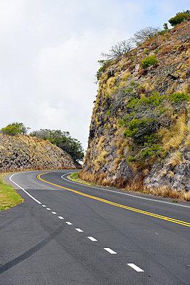 Waimea, Kohala Mountain Road - p1196m1000687 by Biederbick & Rumpf