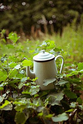 Alte Kaffeekanne  - p432m1590630 von mia takahara