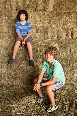 Caucasian boys sitting on hay bales - p555m1410183 by Ronnie Kaufman/Larry Hirshowitz