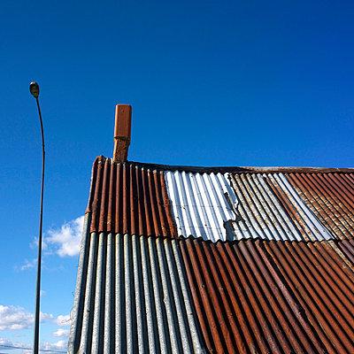Dead tree and blue sky - p8130108 by B.Jaubert