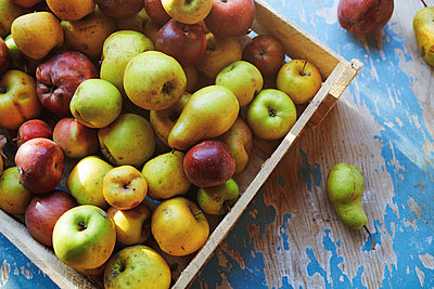 Box of apples and pears - p1427m2067225 by Arman Zhenikeyev